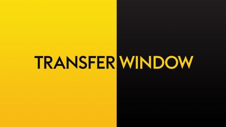 skysports-transfer-window-graphic_4385641.jpg