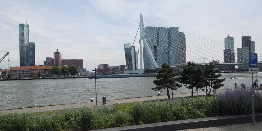 Rotterdam.thumb.JPG.4d9611ab8b8410aac9156995acd11068.JPG