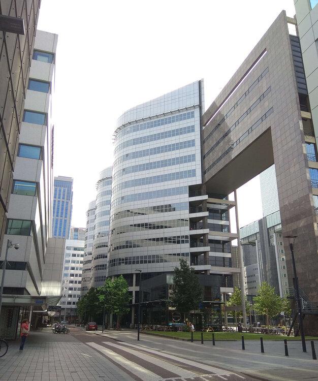 Rotterdam3.thumb.jpg.18b125268cdb8f0cfe8a11b29d64dc03.jpg